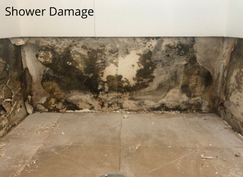 Shower Damage