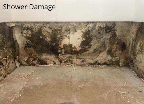 Shower Damage